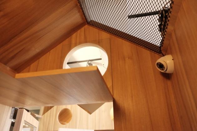 溫馨木屋 5